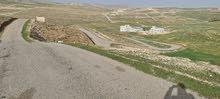ارض في جريبا حوض خطي بجانب اسكان الارقم شفا بدران زينات الربوع بيرين ام رمانة