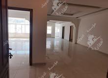 شقة فارغة للايجار ارضية ديلوكس طبربور
