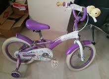child cycle. دراجة أطفال
