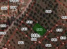 قطعة أرض للبيع في منطقة بيت راس حوض المداحل