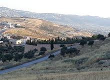 أرض للبيع 775 م اطلالة بانوراما أم رمانة فوق شارع الأردن على 3 شوارع