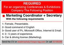 Marketing Coordinator + Secretary