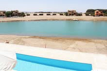 Future real estate for rent in El Gouna