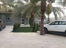 دونم مع بيت مع بيت ثاني هيكل في كربلاء