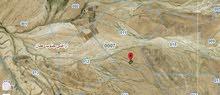 الحمام الشرقي( اراضي محافظ العاصمه جنوب عمان )