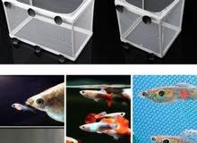 Aquarium Fish Breeding Breeder Tank - (Gauze Isolator)