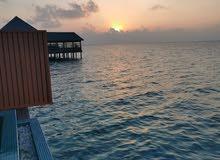للسفر والسياحة للمديالف وسريلانكا وماليزيا وإندونيسيا وتركيا وايران