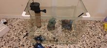حوض سمك مع جميع الملحقات