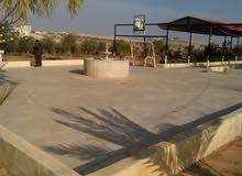 من اراضي اللبن جنوب عمان