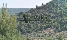 ارض 583م للبيع في منطقة شفا بدران