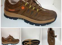 حذاء جبلي تمبرلاند