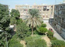 شقة للايجار بمصر الجديدة غرفتين وريسيبشن موقع متميز بالقرب من سيتي سنتر الماظة وتطل على حديقة