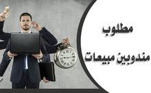 مطلوب عدد 2 مندوب مبيعات مصري الجنسية للعمل في مؤسسة حلويات وشوكولاته ببريده