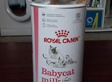 Royal Canin Milk for kitten