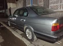 لون صدر الحمام BMW 525