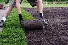 مطلوب مهندس تنسيق حدائق