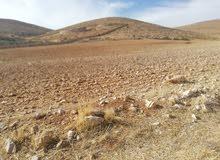 للبيع قطعة أرض مساحتها 34 دنم في دحل منطقة حميد