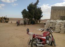 30 فدان طريق اسيوط الغربي على الطريق فى المنيا بعد 10ك من كارتة المنيا مقبل