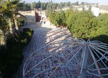 مزرعة 4دونم قمة الروعه على قمة جبلية بين اشجار السرو والبلوط