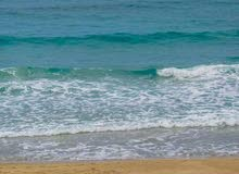 أرض فضاء مساحتها 500م ملك على البحر مباشره بواجهه 16م بالقويعه