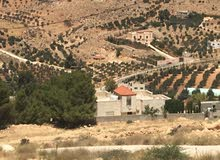 ر قطعة ارض بالقرب من شفا بدران ضمن منطقة فلل