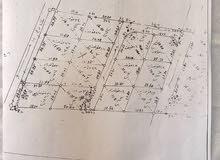 ارض للبيع في مؤتة ( الشويحة) 812 م بسعر مغري