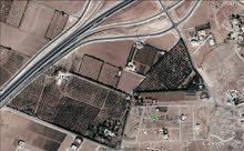 ارض 600 م في الطنيب - حوض البلد - قريبة جدا من جامعة الإسراء
