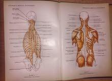 المعجم الطبي (hitti's medical dictionary)