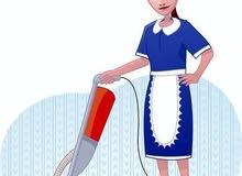 أبحث عن عاملة منزل مؤقته لمدة شهر واحد فقط للعمل في منزل في الرستاق