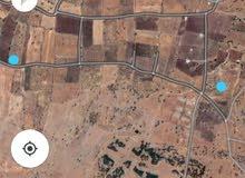 قطعة ارض زراعيه للبيع في سوريا السويداء قرية الرحا