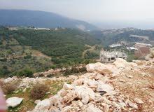 أراضي للبيع مساحات مختلفة في منطقة هادئة وتسكن صيفا وشتاءا