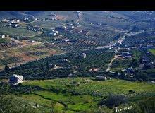 قطع ارض بالاردن محافظة عمان بسعر مغري