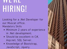 . Net developer