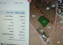 ارض 4800م للبيع - جنوب عمان صوفا تلعة الاسمر
