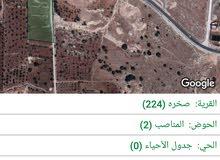 أرض زراعية مخدومة بشارع رئيسي وشارع فرعي