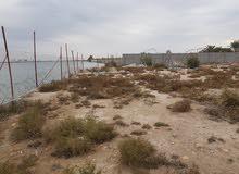 دونم على شط العرب مباشرة وعلى نهر فرعي خلف القصور الرئاسية