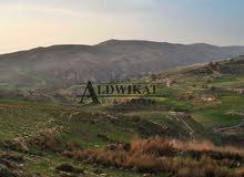 ارض للبيع بدر ذات موقع مميز و موقع مميز بمساحة 1000 متر
