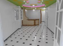 شقة سوبر لوكس في شارع رئيسي للبيع - شاطئ النخيل اسكندرية