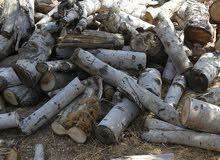 قص وتقطيع الاشجار وحطب النار