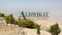 ارض للبيع في منطقة شفا بدران بمساحة : (4دنم) .