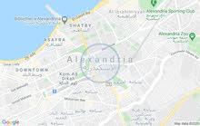 محل للايجار في محمد نجيب رئيسي جيوي جدا