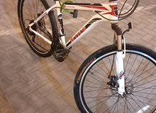MTB king bicycle for sell