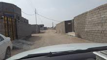 قطعتين للبيع مساحة الواحدة 250 متر في الزبير طريق البرجسية خلف مشتل شداد الفارس