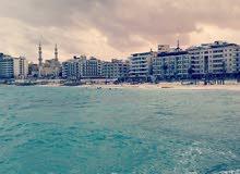 امتلك 55م ترى البحر فى مرسى مطروح بشاطئ الابيض مباشرة