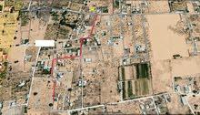 ارض للبيع في الحبايبية  طربق جامع الصحابة في عين زارة بعد الباعيش مساحتها 3340 متر ب315 الف