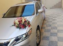 2017 Lexus for rent in Amman