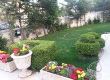 Villa for rent with More rooms - Amman city Abdoun