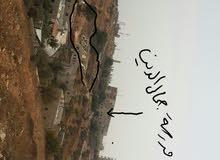 أرض للبيع السلط وادي الحلبي
