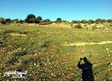 ارض للبيع في بني كنانه مساحتها 5625 م