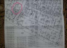 قطعة أرض للبيع في ابو نصير نص دنم